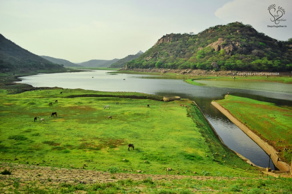 Panchapalli Dam Backwater